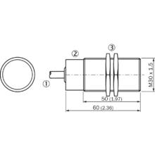 IM30-10BPS-ZW1 (6020274)