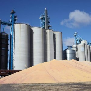 Flour-Mill Atex 21 & 22